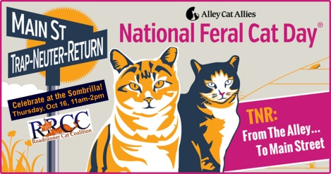 RRCC_NationalFeralCatDay2014
