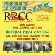 National Feral Cat Day, Oct 16, 2015