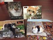 RRCC Greeting Cards