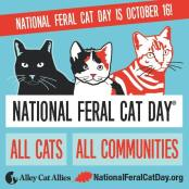 2016 National Feral Cat Day