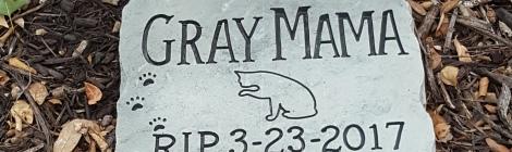 Gray Mama Memorial Stone