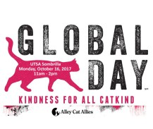 2017 Global Cat Day